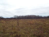 Miller Lake Listing for Sale - LOT 42 CRANE LAKE ROAD