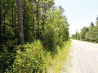Wiarton Listing for Sale - 608 HURON ROAD