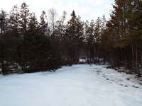 Tobermory Listing for Sale - 42 BORDEN DR.