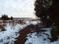 Tobermory Listing for Sale - LOT 10 BORDEN DR.