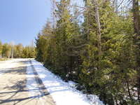 Lions Head Listing for Sale - LOT 64 PIKE ST