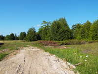 Lions Head Listing for Sale - PART LOT 3 FORTY HILLS ROAD