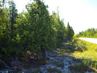 Tobermory Listing for Sale - LOT 207 DORCAS BAY ROAD