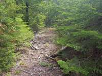 Tobermory Listing for Sale - PART LOT 53 MUNN DRIVE