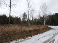 Stokes Bay Listing for Sale - LOT 31 HENWOOD