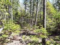 Miller Lake Listing for Sale - PART LOT 18 BRADLEY DRIVE