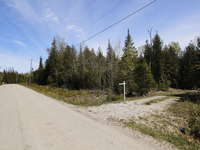 Lions Head Listing for Sale - LOT 17 FOWLIE ROAD