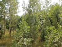 Miller Lake Listing for Sale - PART LOT 23 MAPLE DRIVE