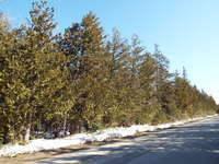 Tobermory Listing for Sale - LOT 8 HAY BAY ROAD